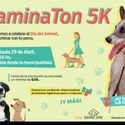 """Mascotas y familia disfrutarán del """"Caminatón 5 Km"""""""