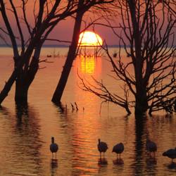 Lago Epecuén