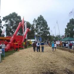 Fiesta del Chacarero (Chillar)