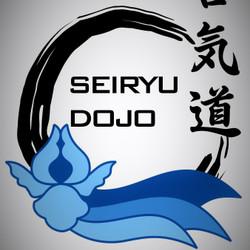 Aikido Seiryu Dojo