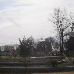 Plaza Botánico
