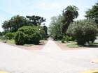 Foto: Municipalidad de Tapalqué