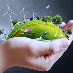Actividades por el Día del Medio Ambiente para los más pequeños